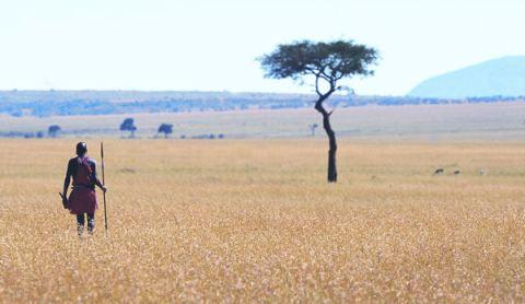 Masai%20Mara_Image